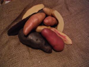 Fingerling Mix - Purple Fiesta, Russian Banana, French Fingerling, Rose Finn Apple